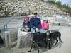 DeerIslandApril252010011