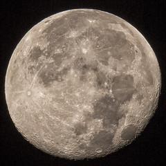 moon at Oxbow Bow Bend (Marvin Bredel) Tags: wyoming jacksonhole grandtetonnationalpark marvinbredel