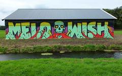 Graffiti A12 (oerendhard1) Tags: urban streetart art graffiti track vandalism wish a12 imps melo trackside