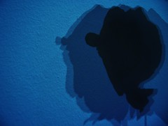 Clown (Tenerife) (Seigar) Tags: different canarias tenerife isla islas islacanaria seigar tenerifesecreto secretotenerife hiddentenerife escondidotenerife