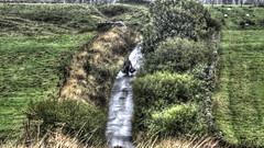 The Bin Man (FARCE 68) Tags: england man countryside farm sony bin rigg binman saughy dschx100v rpovey