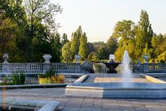London (Edi Bähler) Tags: park plant tree fountain wasser springbrunnen pflanze structure bauwerk baum 85mmf18 nikond800 brunnenanlage hydeparklondonlm