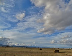 afternoon in the flathead valley (green rumble) Tags: sky mountains field clouds scenery montana afternoon straw sunny bales montagna kalispell sunnyday flatheadvalley kalispellmontana