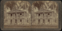 Charming Porto Rico - a pretty suburban home near Mayaguez (Boston Public Library) Tags: houses families bostonpubliclibrary neighborhoods bpl stereographs photographicprints citytownlife