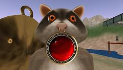 Bokeh WIP (Pamela Igalies / Bokeh) Tags: red stone mesh little bokeh sl riding littleredridinghood secondlife virtual medallion hood cracked enchantment gem enchanted originalmesh bokehstore