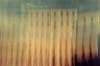 i > t > a > l > i > a (neamoscou) Tags: art film girl analog flickr pentax grain inspired slide slidefilm retro smoking indie nophotoshop expired zenitar analogphotography alternative facebook nopostproduction noediting diafilm diapo τέχνη 写真 alternativephotography filmphotography عکاسی هنر inconnu taide 藝術 فن 影相 russianlens 芸術 slowfilm 예술 古着 ศิลปะ independentphotography tumblr छायाचित्र कला 사진술 lowspeedfilm ফটোগ্রাফি صوير শিল্প การถ่ายภาพ ஒளிப்படவியல் ხელოვნება sergeyneamoscou heisnotcomingbackgetoverit ਕਲਾ