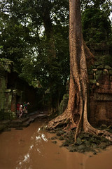Entering Angkor Thom (esecamalich) Tags: travel tree nature water river nikon cambodia angkorwat backpacking angkorthom