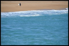 """""""Out of water, I am nothing"""" (AlPekone) Tags: ocean mer france beach sports sport landscape boards nikon surf ride surfer sable playa surfing paysage plage pays basque biarritz sud riders paysbasque waver anglet ouest"""