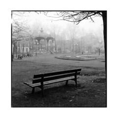 bench in the fog • dijon, burgundy • 2013 (lem's) Tags: winter fog bench dijon burgundy hiver hasselblad bourgogne brouillard banc 500cm suqare