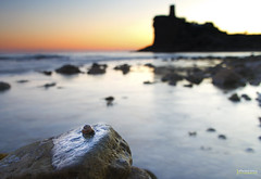 Caragol mar ( alfanhu) Tags: sunset torre snail bluehour seasnail charco villajoyosa lavilajoiosa tamron1750 horaazul xarco horablava