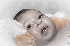 Laura - 2 Meses (Renato.Neto) Tags: baby laura ensaio photoshoot bebê