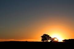 IMG_M2156 (Max Hendel) Tags: ranch campo canoneos bymaxhendel maxhendelphotography vision:sunset=098 vision:outdoor=099 vision:clouds=099 vision:sky=099 iacangaranchfishing ranchodepescariadeiacanga