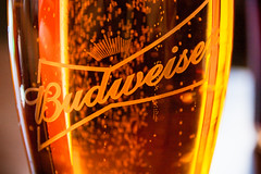 Budweiser (Multimaniaco) Tags: winter friends amigos macro beer cerveza murcia invierno budweiser 2014