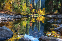 The Merced River - Yosemtie National Park (Darvin Atkeson) Tags: california travel autumn vacation mountains color reflection fall leaves river nationalpark solitude unitedstates nevada merced sierra yosemite yosemitevalley darvin atkeson darv liquidmoonlightcom lynneal