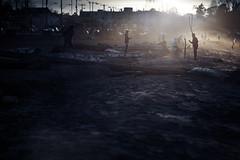 (sparth) Tags: beach silhouettes alki plage 70200 2014 70200mmf4l 70200f4l 20134 5dmkii