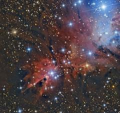 NGC 2264 - Cone Nebula (Paddy Gilliland @ Image The Universe) Tags: ngc2264 cone nebula christmastree christmas tree ngc ic space nebulae stars night astro astronomy astrophoto astrophotography ap lrgb rgb hubble cosmos texture abstract outdoor wide widefield nighttime sky dark colours astrometrydotnet:id=nova1971301 astrometrydotnet:status=solved