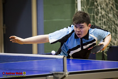 _3TT0370 (Sprocket Photography) Tags: tabletennisengland tte tabletennis seniorbritishleaguechampionship batts harlow essex urban nottinghamsycamore londonacademy drumchapelglasgow kingfisher wymondham cippenham uk normanboothrecreationcentre etta
