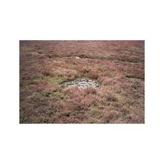 SDG-14 (sm0r0ms) Tags: olympus mjuii μ film analog kodak portra 35mm 2016 landscape architecture color photography landscapephotography sardinia italy autaut ishootfilm filmisnotdead oftheafternoon ifyouleave theanalogueproject newtopographics romainsaccoccio