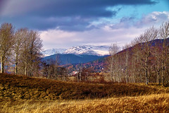 On the Badenoch Way, (Fr Paul Hackett) Tags: mountain trees grass snow sunshine badenoch sky