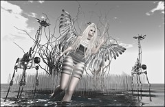 Silver Angel.... (bewitcheddifference) Tags: treschic oak eve since1975