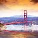 Golden Gated Reverie!