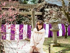 北野天滿宮 梅苑 (Roa!) Tags: 日本 關西 京都 北野天滿宮 梅花 梅苑