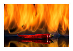 Hot Chili (PhotoChampions) Tags: fire hot chili reflection burning tabletop scharf chilischote vegetables spicy