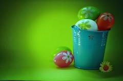 Happy Easter everyone ... (Đøn@tus ♠) Tags: easter pasqua ostern happyeaster buonapasqua froheostern felizpascua festivity gorgeous brilliant