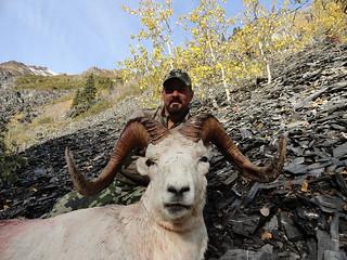 Alaska Dall Sheep Hunt & Moose Hunt 4