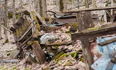 (Paul Mackay Photographie) Tags: wood house wreck demolised metal forest alone nikon d300 50mm leaf feuille maison destroy dslr nikondslr