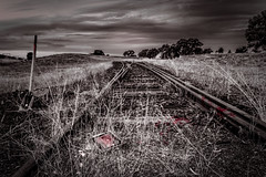 Blood On The Tracks Dylan Series (BlueberryAsh) Tags: bloodonthetracks railway tracks bobdylan dylansong railwaytracks blood nikond750 nikon24120 monochrome