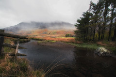 Shrouded in mist (Lee~Harris) Tags: landscape colour river water tree fence grass mountain mist outdoor happy nikon wales snowdonia dreamy magical light daytime pretty colours outdoors nature flickr naturephotography landscapephotography ogwen valley orange 1020 lens