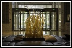 CHINA | Shanghai, Renaissance Shanghai Zhongshan Park Hotel (Rita Ho 2014) Tags: china shanghai 2017 leica m240 availablelight summiluxm 11450 asph 上海 上海漕河涇萬麗酒店 玻璃 glass