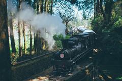 Steam train|Taiwan 阿里山蒸汽火車 (里卡豆) Tags: olympus penf voigtlander 175mm f095 nokton steam train taiwan 阿里山 蒸汽火車 chiayi alishan 台灣 嘉義