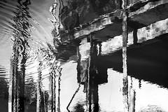 one drop can change everything (rqserra) Tags: reflexões reflexos palafita agua gota pretoebranco fotografiacontemporânea fineart fineartist finearts fineartphoto reflections reflexes bw water drop contemporaryart contemporary contemporaryartist contemporaryphoto