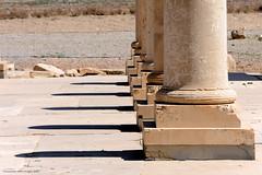 Pasargadae pillars (Chris Brady 737) Tags: pasargadae pillars shiraz iran persia achaemenid pars