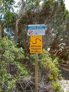 Beware of snakes