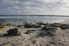 Vivonne Bay beach (cathm2) Tags: australia sa southaustralia kangarooisland vivonne bay trave beach shore sand sea coast clouds