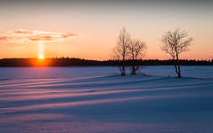 Sunset at lake Suolijärvi (Kyösti Välitalo) Tags: winter sun sunset orange red trees frost snow finland posio light last sky clouds
