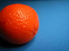 Orange is the new orange. (BobaBit) Tags: macromondays orangeandblue