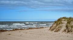 Tiscornia Beach, St. Joseph (mswan777) Tags: water waves beach shore lake michigan st joseph tiscornia sand dune grass outdoor nature wind nikon d5100 sigma 1020mm sky cloud seascape landscape