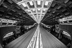 Metro Baby (Thomas Hawk) Tags: dc districtofcolumbia metro usa unitedstates unitedstatesofamerica washingtondc washingtonmetro architecture subway fav10 fav25 fav50 fav100