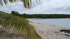 Pata Prieta Secret Beach (mmccouch) Tags: vieques puertorico pataprieta secretbeach