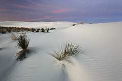 Early Sunrise at White Sands (Laura Zirino, here every now and then) Tags: whitesands whitesandsnationalmonument sunrise southwest sanddunes desert newmexico landscapes landscape