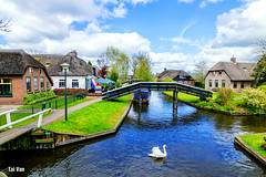 Giethoorn village (Black Baron93) Tags: europe 2017 netherlands canal oldhouse tranditional swan tokina1116f28 canon600d sunnyday