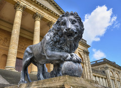 Stowe House, Buckingham - 18th century lion sculpture (Baz Richardson (trying to catch up again!)) Tags: buckinghamshire stowehouse medicilions sculptures 18thcenturylionsculptures