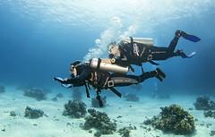 1204 36a (KnyazevDA) Tags: disabled diver disability diving owd underwater undersea padi redsea buddy handicapped paraplegia paraplegic