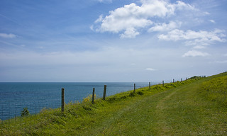 a fence with a knack for the Sea - HFF!