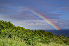 A rainbow rises from the sea