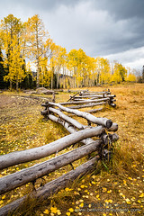 Fall Fence (b_mccarley) Tags: ouray colorado co fall autumn nature natural landscape color colorful aspens aspen trees mountain rocky mountains rockymountains